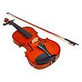 ZZ バイオリン2