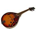 oi_st_aria_e-mandolin.jpg