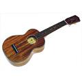 oi_st_ukulele.jpg